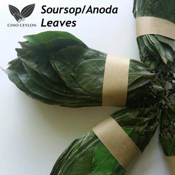 Organic Dried Soursop Leaves
