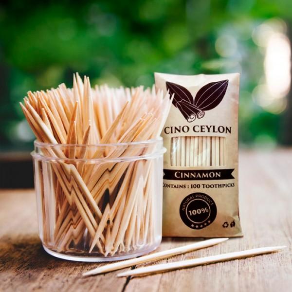 Cinnamon Flavored Toothpicks 100 Nos