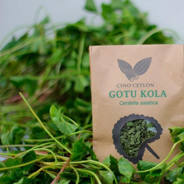 Dehydrated Gotu Kola (Centella asiatica) - Cut