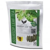 Soursop/GRAVIOLA/GUANABANA LEAF 30 Tea Bags Cancer killer