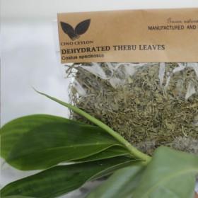 Dehydrated Thebu (Costus speciosus)