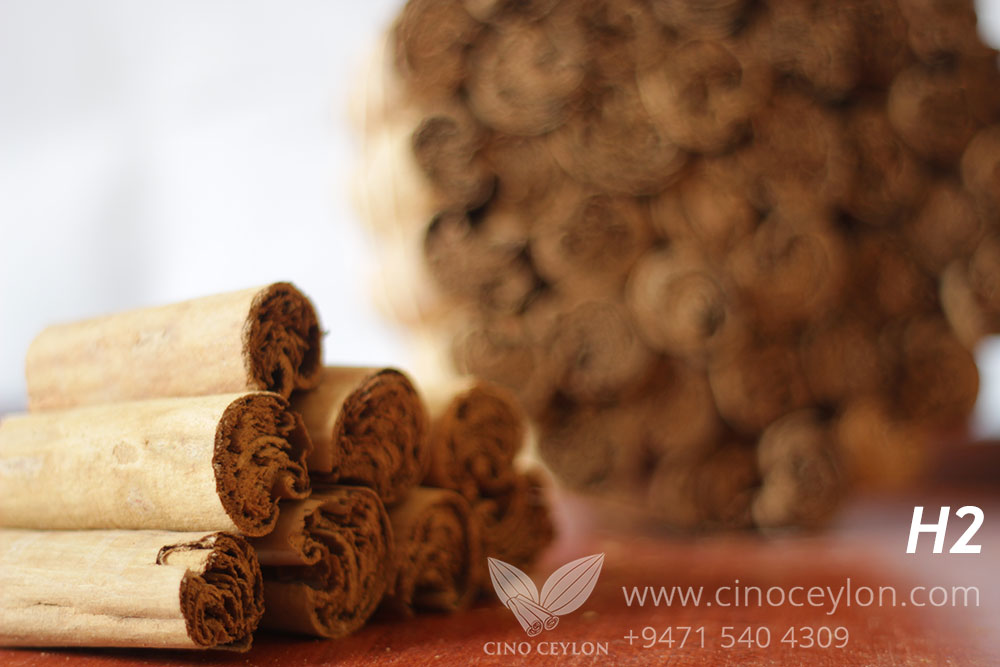 cinnamon H2 wholesale